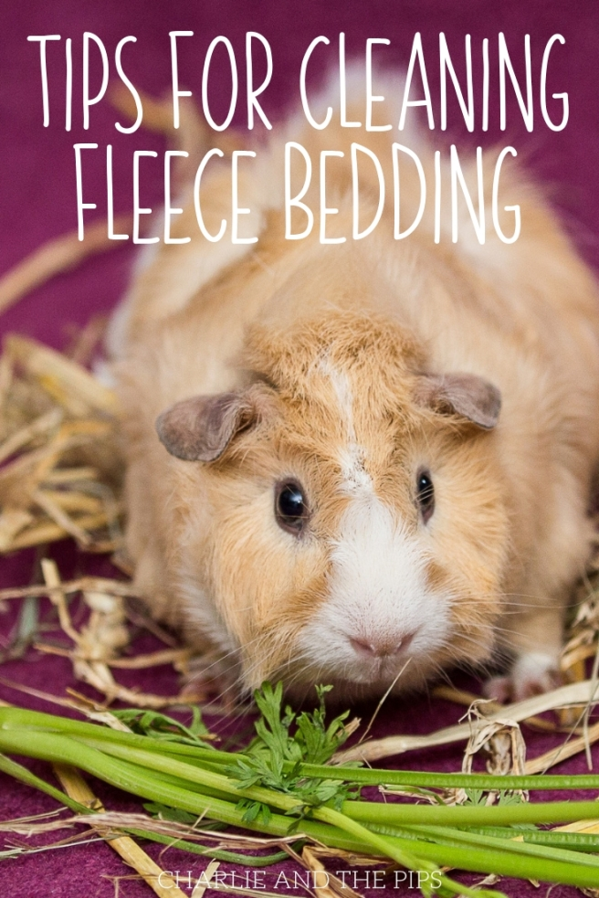 Here are my top tips and answers to popular questions about fleece bedding. It's easier than you think to clean fleece bedding. Use these tips for cleaning fleece bedding to get you started!